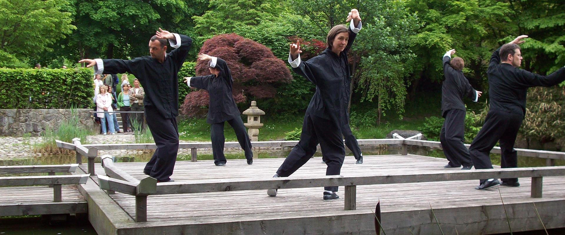 Auftritt Vesakh-Fest 2008, Tao Übungen